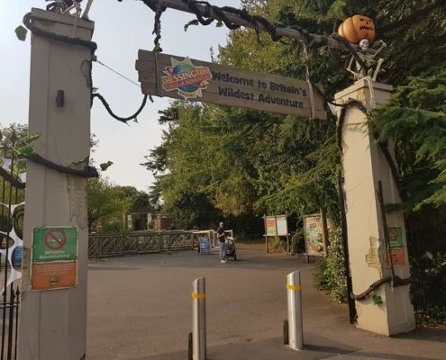 Chessington world of adventures review