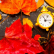 Autumn Clock Change for Toddlers