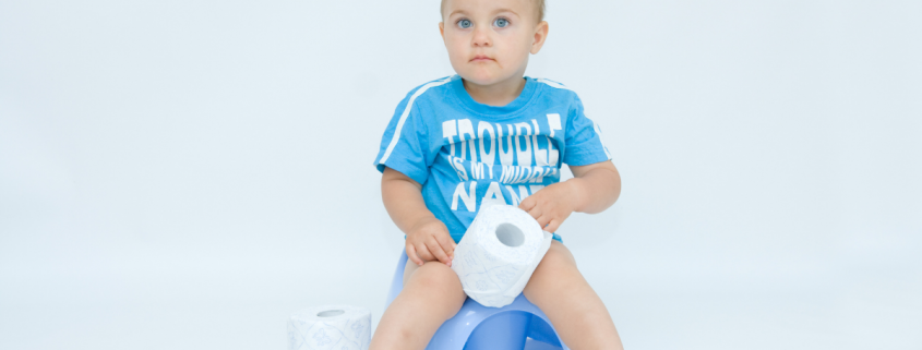 when to potty train a toddler
